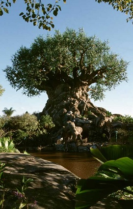 arvore-animal-kingdom-disney